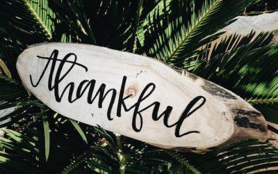 The Critical Matter of Gratitude