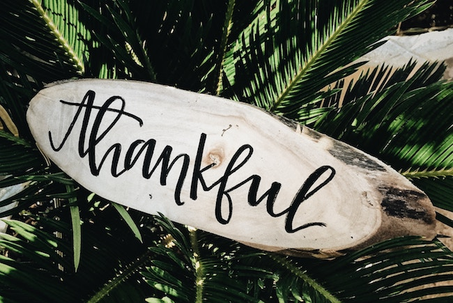 The Critical Matter of Gratitude