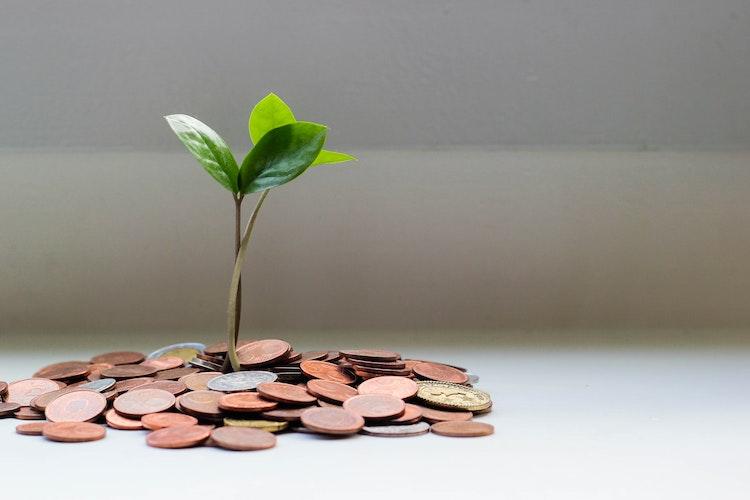 Balancing Money & Ministry