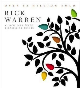 I Wanted to be Rick Warren